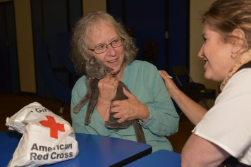 Pet Shelter Story Pic - Lady with Cat